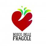 Il Bosco delle Fragole Roma 8 luglio 2017